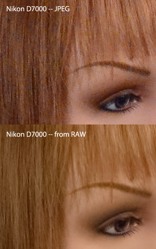 Nothing Special: Low Light Comparison of Canon 60D, Nikon