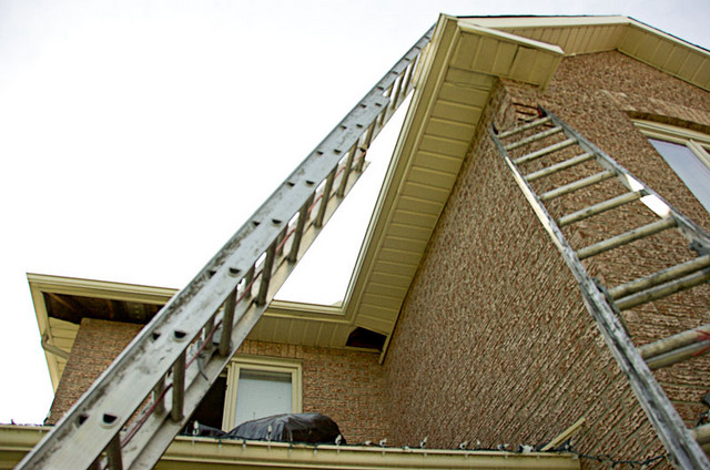 Skip to the third hour of the removal of the racoons, and they mention that they found one in the soffits and were chasing it  out of the attic. The outside fellow who was repairing the soffits had to get off the ladders for safety's sake.
