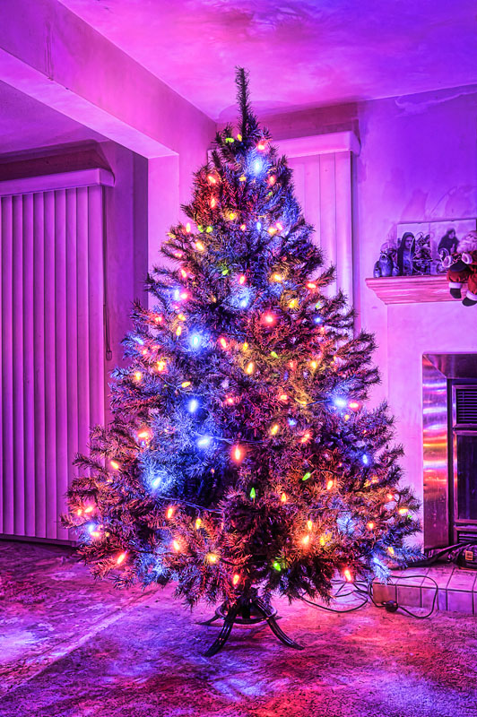 Pretty Christmas Trees Nothing Special Oh Christmas Tree Oh Christmas Tree  Topaz .